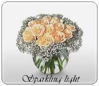 sparkling light 650000